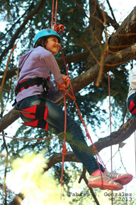 New Tribe Tree Climbing Gear